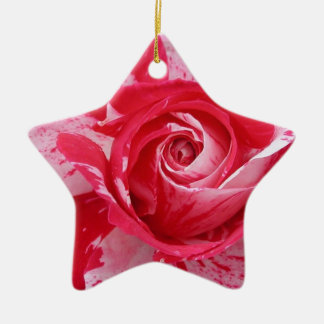Red and White Rose Ornament