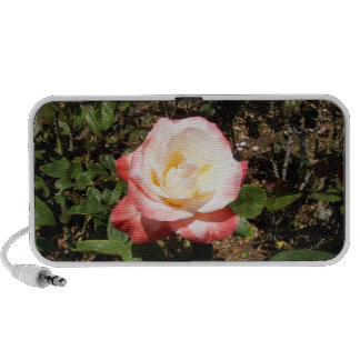 Red And White Rose Portable Speakers
