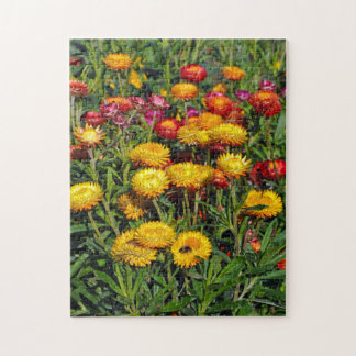 Red and yellow button flowers jigsaw puzzle
