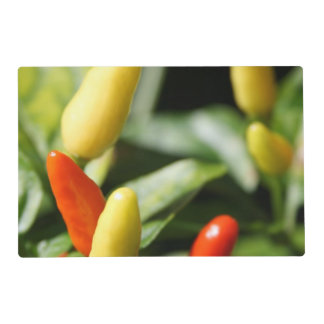 Red and Yellow Chilli Plant Laminated Place Mat