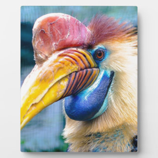 Red and Yellow Hornbill Plaque