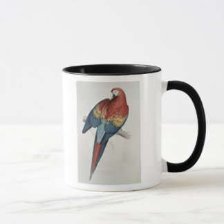Red and Yellow Macaw Mug
