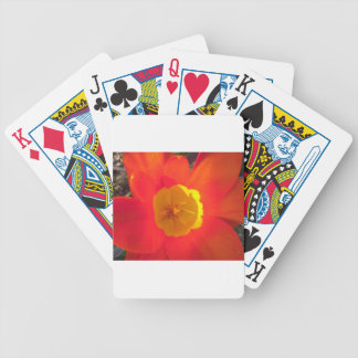 Red and yellow open tulip flower bicycle playing cards