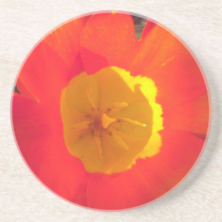 Red and yellow open tulip flower coaster