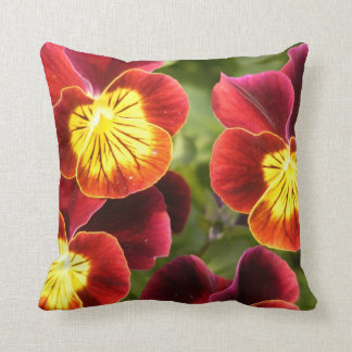 Red and Yellow Pansies (Viola) Cushion