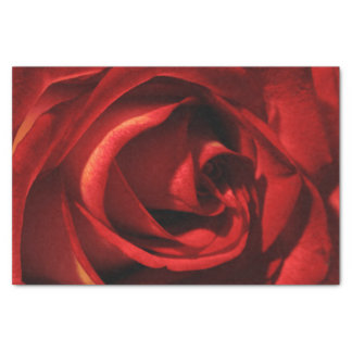 Red and Yellow Rose Valentine's Day Tissue Paper