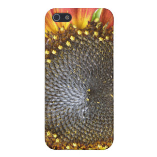 Red and Yellow Sunflower iPhone 4 Case