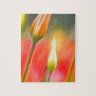 Red and Yellow Tulip Sketch Jigsaw Puzzle