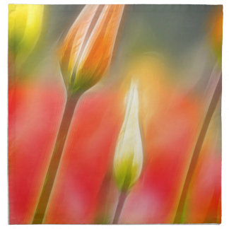 Red and Yellow Tulip Sketch Napkin