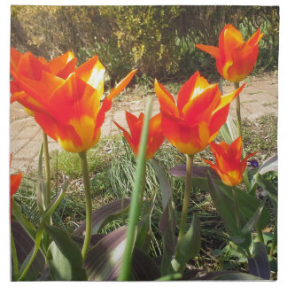 Red and Yellow Tulips Napkin