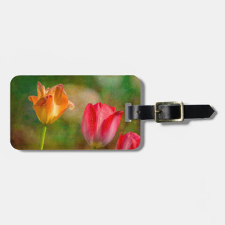 Red and yellow tulips on textured background bag tag