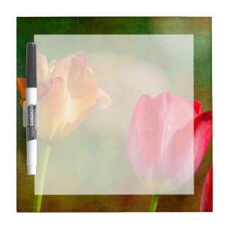 Red and yellow tulips on textured background Dry-Erase whiteboards