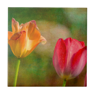 Red and yellow tulips on textured background small square tile