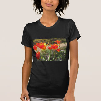 Red and Yellow Tulips T-Shirt