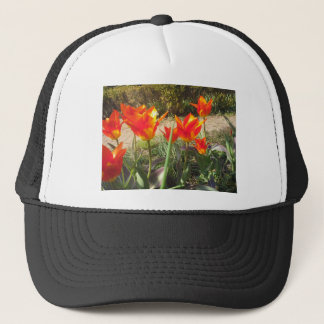 Red and Yellow Tulips Trucker Hat