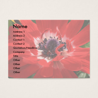 Red Anemone Business Card