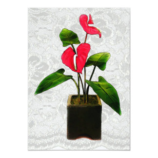 Red Anthurium in Planter Card