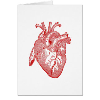 Red Antique Anatomical Heart Card