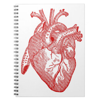 Red Antique Anatomical Heart Notebook