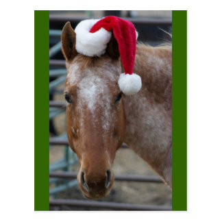 Red Appaloosa with Santa Hat Postcard