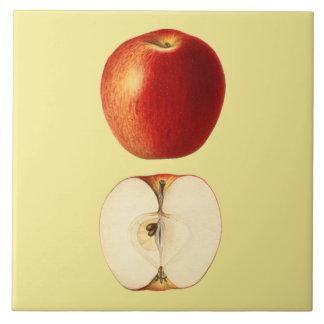 Red Apple Botanical ~Kitchen ~Any Color Background Tile