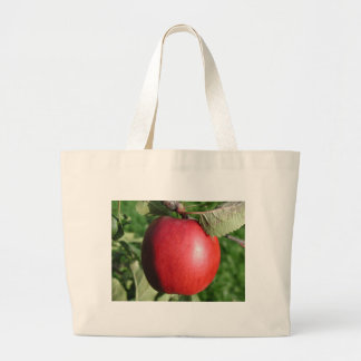Red Apple with a Leaf Bag