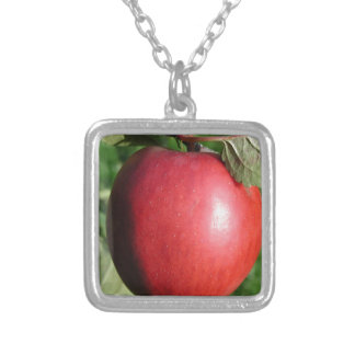 Red Apple with a Leaf Necklace