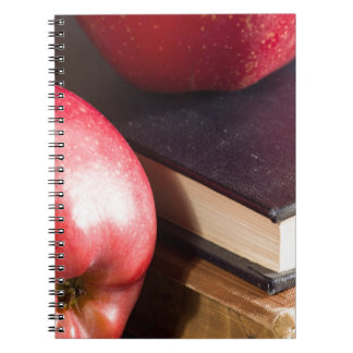 Red apples and old vintage book