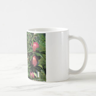Red apples on tree branches coffee mug