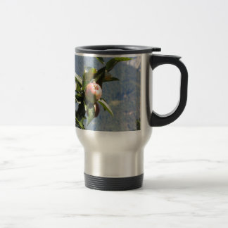 Red apples on tree branches mugs