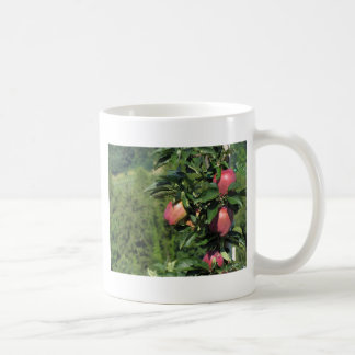 Red apples on tree branches coffee mugs