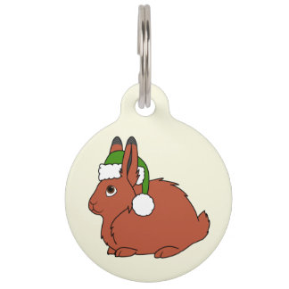 Red Arctic Hare with Christmas Green Santa Hat Pet Name Tag