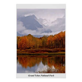 RED ASPENS IN THE FALL IN GRAND TETON POSTER