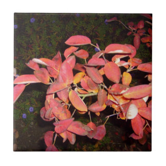 RED AUTUMN LEAVES BRANCH DARK SMALL SQUARE TILE
