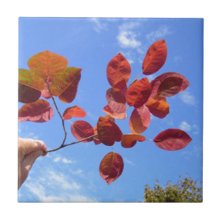 RED AUTUMN LEAVES BRANCH IN HAND SMALL SQUARE TILE