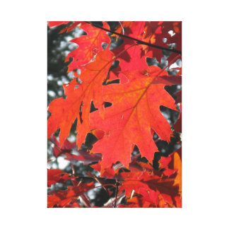 Red autumn leaves gallery wrap canvas
