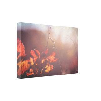 Red autumn nature canvas print