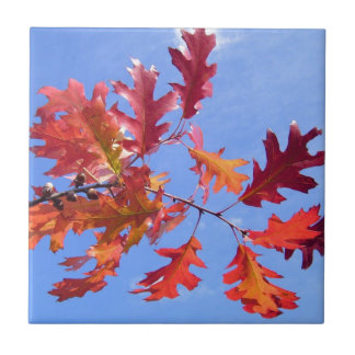 RED AUTUMN SMALL SQUARE TILE