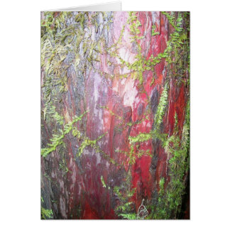Red Bark Card