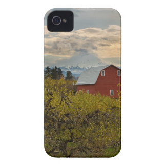 Red Barn at Pear Orchard Oregon iPhone 4 Case-Mate Cases