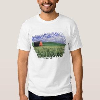Red barn in wheat & barley field in Whitman Shirts