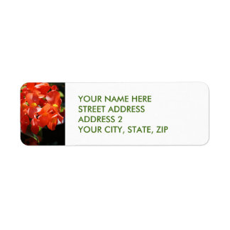 Red Begonia Four-Line Address Labels