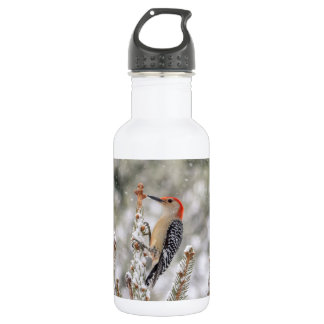 Red-bellied Woodpecker in the snow 532 Ml Water Bottle