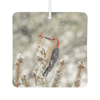 Red-bellied Woodpecker in the snow Car Air Freshener