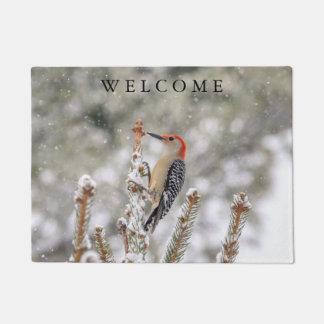 Red-bellied Woodpecker in the snow Doormat