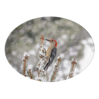 Red-bellied Woodpecker in the snow Porcelain Serving Platter