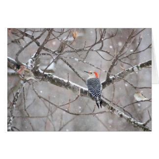 Red Bellied Woodpecker Notecard - Blank Inside