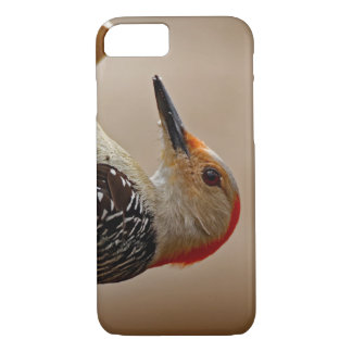 Red-bellied Woodpecker on a Suet Feeder iPhone 8/7 Case