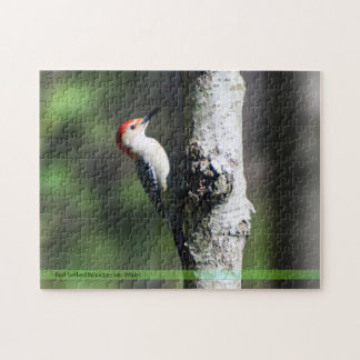 Red-bellied Woodpecker Puzzle