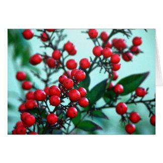 Red berries card